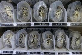 The Vending Machine Killer Magnificent Live Crab Vending Machine China SERIAL KILLER MASS MURDERER