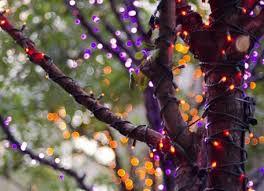 halloween lighting tips. halloween lights outdoor photo 3 lighting tips