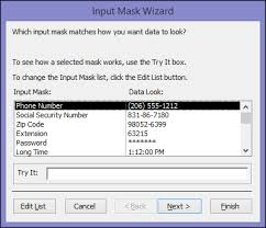 data input control data entry formats with input masks access