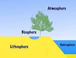 Cc Week 13 Simple Diagram Of Hydrosphere Biosphere