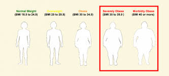 Underweight Normal Overweight Obese Chart Are You Overweight Underweight Obese Or At A Normal Weight