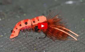 Bass Flies - Southeast Regional Flies   Fly Tyer