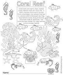 Coral Reef Animal Printouts Cover Page