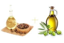 how to use castor oil for hair be