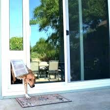 dog door wall entry extra large pet door dog door for doors walls sliding ideal patio