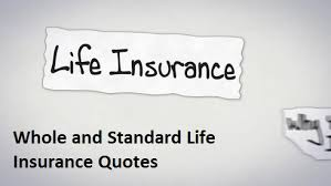Online Seniors Travel Insurance Quotes Should I Buy Custom Travel Life Insurance Quotes