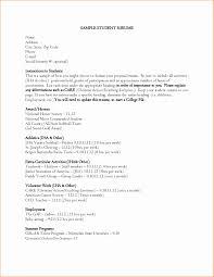 Fresh Group Leader Sample Resume Resume Sample