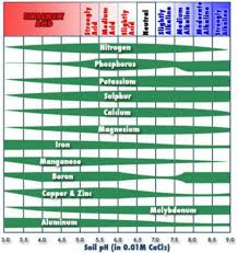 Vegetable Ph Chart Understanding Soil Ph Part I Msu Extension