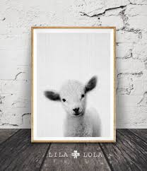 lamb print black and white baby sheep wall art nursery farm animal decor  on black sheep wall art with lamb print baby sheep wall art nursery animal digital download