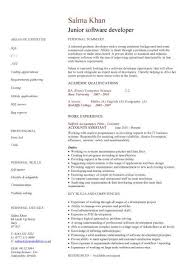 Junior software developer CV sample, resume writing, curriculum vitae, CV  examples, sample