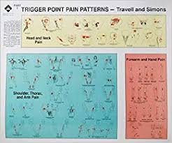 Trigger Point Pain Patterns Wall Charts By Janet G Travell