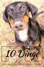 1000 ideas about Hundetrainer Ausbildung on Pinterest 101.