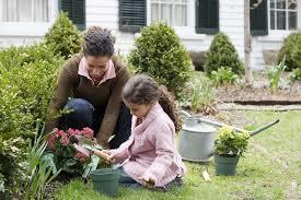 Organic Kitchen Gardening How To Start An Organic Vegetable Garden