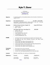Self Employed Handyman Resume Handyman Resume Sample Lovely 50 Self Employed Resume Samples