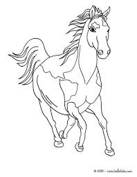 Small Picture Wild horse coloring pages Hellokidscom