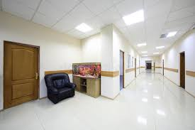 aquarium office. Download Light Corridors With Doors To Offices And Aquarium Stock Photo - Image Of Business, Office