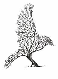 Bird Illustration Lines Blackandwhite Tree Drawing Easy But