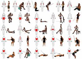 the vast majority of fitness equipment lying around can t offer the sort of exercise diversity that es with suspension trainers with suspension