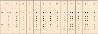 Amazing Recorder German Recorder Fingerings Chart