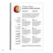 Microsoft Word Resume Template For Mac Adorable Resume Inspirational Microsoft Word Resume Template For Mac