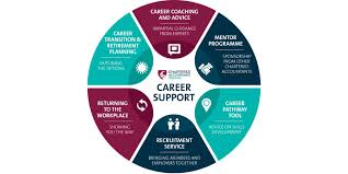 What Is Career Development Career Development