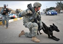 How Much Should I Get Paid Do You Think That The Members Of The Military And Police Force