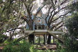 Image of: Awesome Tree House Mansion