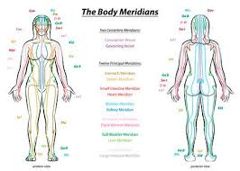 Chinese Meridian Chart Pdf Acupressure Stock Photos And Images 123rf