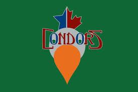the 2018 16 bakersfield condors logo everyone