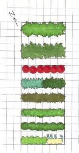 Small Picture Designing a Vegetable Garden HowStuffWorks