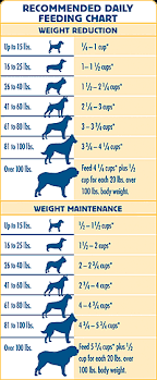 Iams Puppy Food Chart 60 Right Dog Food Conversion Chart