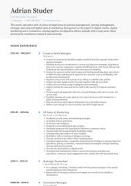 Sales Manager Cv Template Country Manager Resume Samples And Templates Visualcv