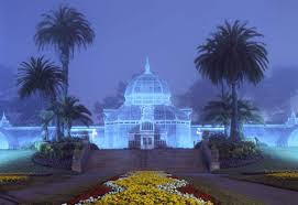 Holiday Lights At Sf Conservatory From Dusk Till Dawn A Night Photography Tutorial Flowers