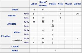 German Consonant Chart Pin By Jen Straka On Language Deutsche Language Ipa Words