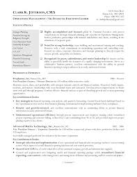 director of finance resume template director of finance resume