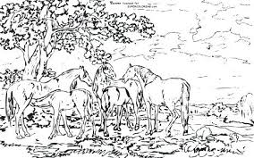 River Coloring Pages Printable Mares And Foals In A River Landscape