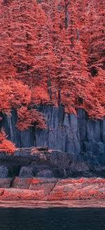 bd41-mountain-red-tree-nature-art ...