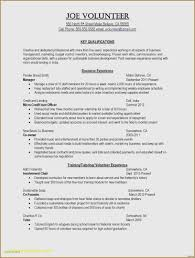 30 Best Of Resume Objective Examples For Business Students
