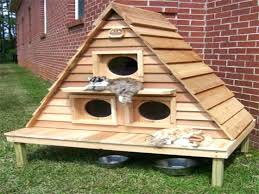 outdoor cat tree australia beds and houses house awesome furniture b outdoor cat tree