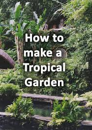 how to make a tropical garden design