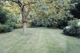gypsum is particularly suitable for lawns and pastures