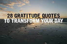 Quotes On Gratitude Stunning 48 Inspiring Gratitude Quotes To Transform Your Day [Updated 48