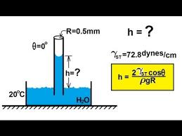 Physics Mechanics Fluid Statics 6 Of 12 Surface Tension Capillary Action Example 1 Water