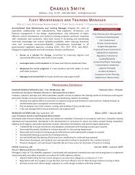 Professional Resume Writers Professional Association Of Resume
