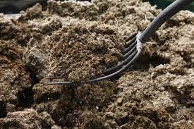add manure to improve garden soil