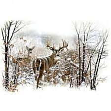 Details About Mens Or Womens Whitetail Deer Hunting Sweatshirt Or Hoodie Sm 3xl Shirt New