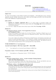 Summer Job Resume Examples Resume For Study