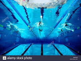 underwater photograph of a boys high swim team practicing in an olympic size swimming pool