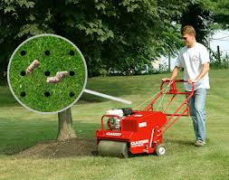 Image result for lawn plug aerator