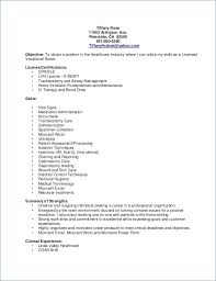 Lvn Resume Examples Resume Example